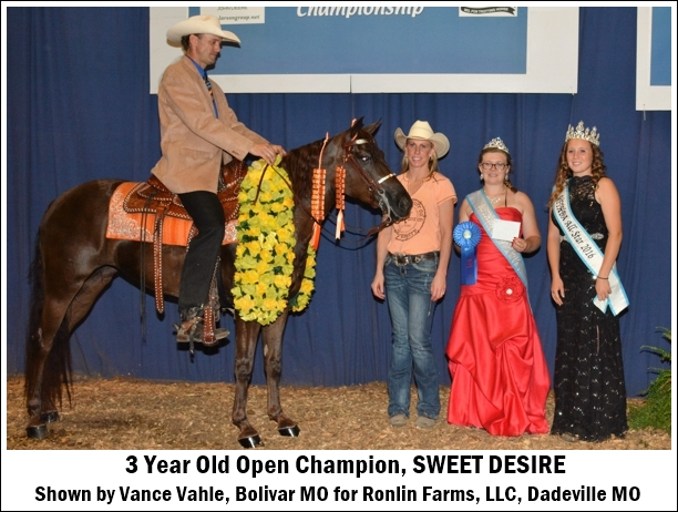3yearold-open-champion2