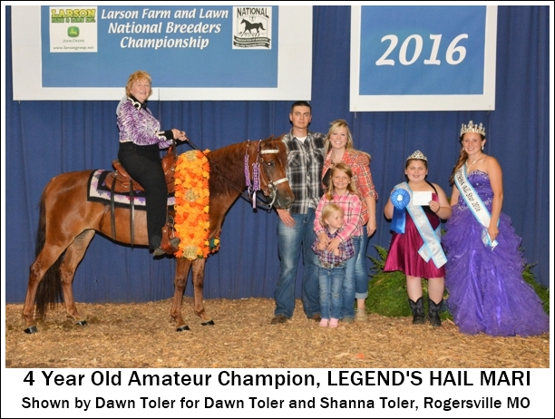 4yearold-amateur-champion2